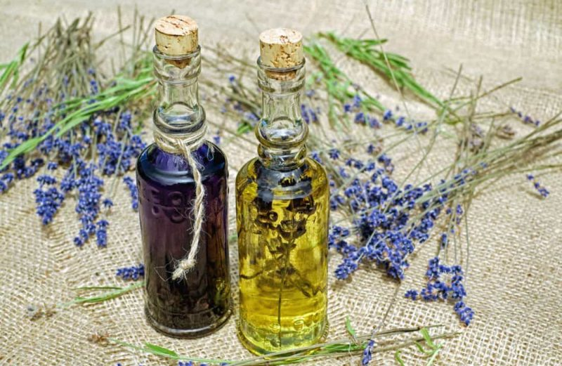 Phytothérapie et herboristerie